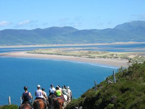 4 Days Ring of Kerry Trail Horse Riding Holiday in Kerry, Ireland