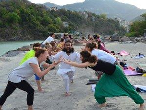 35 Days 300-Hour Meditation and Yoga Teacher Training in Rishikesh, India